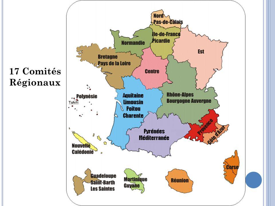 17 Comités Régionaux