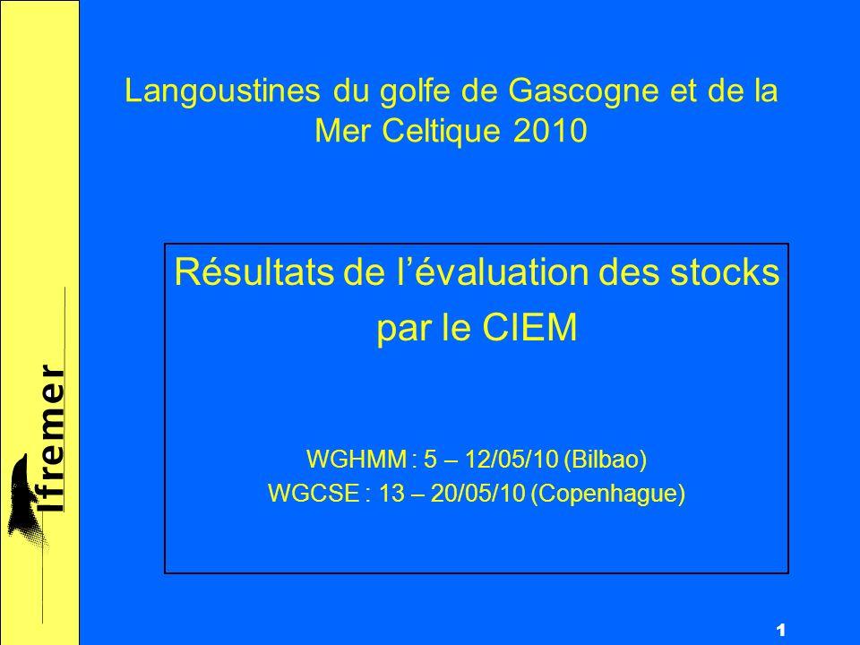 1 Langoustines du golfe de Gascogne et de la Mer Celtique 2010 Résultats de lévaluation des stocks par le CIEM WGHMM : 5 – 12/05/10 (Bilbao) WGCSE : 13 – 20/05/10 (Copenhague)
