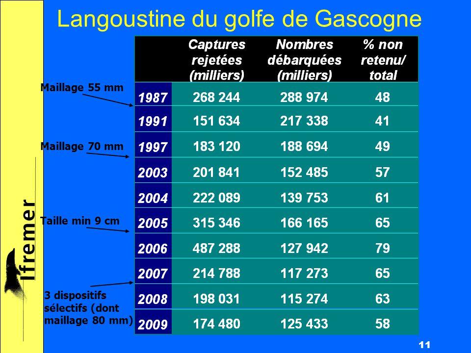 11 Langoustine du golfe de Gascogne Maillage 55 mm Maillage 70 mm 3 dispositifs sélectifs (dont maillage 80 mm) Taille min 9 cm