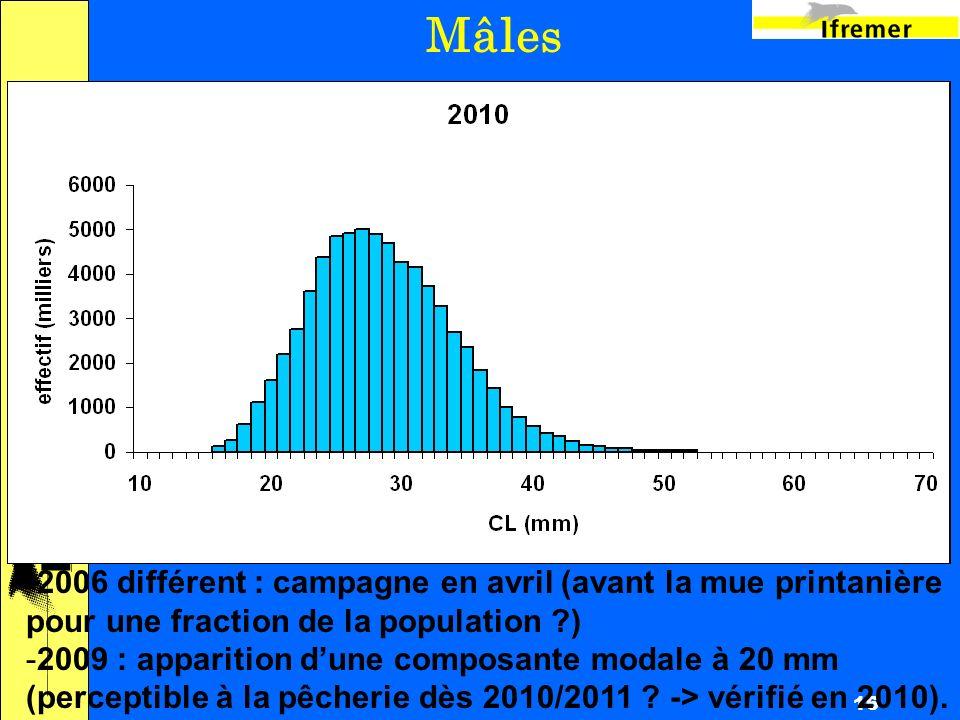 16 Mâles -2006 différent : campagne en avril (avant la mue printanière pour une fraction de la population ) -2009 : apparition dune composante modale à 20 mm (perceptible à la pêcherie dès 2010/2011 .