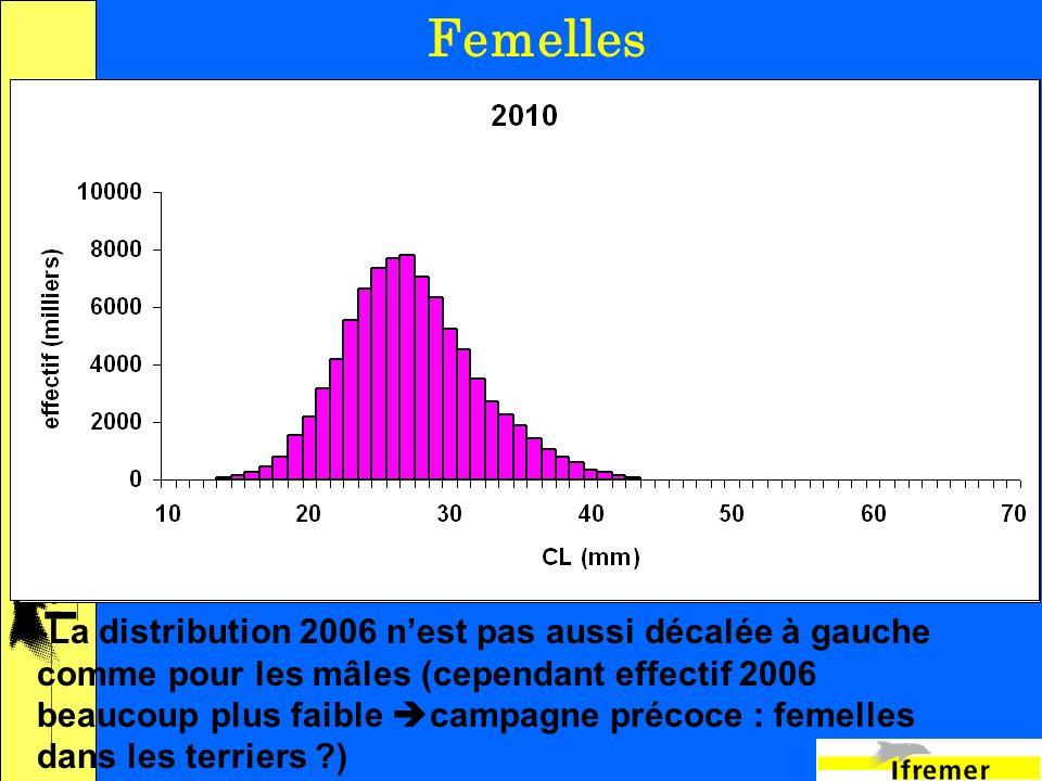 17 Femelles -La distribution 2006 nest pas aussi décalée à gauche comme pour les mâles (cependant effectif 2006 beaucoup plus faible campagne précoce : femelles dans les terriers )
