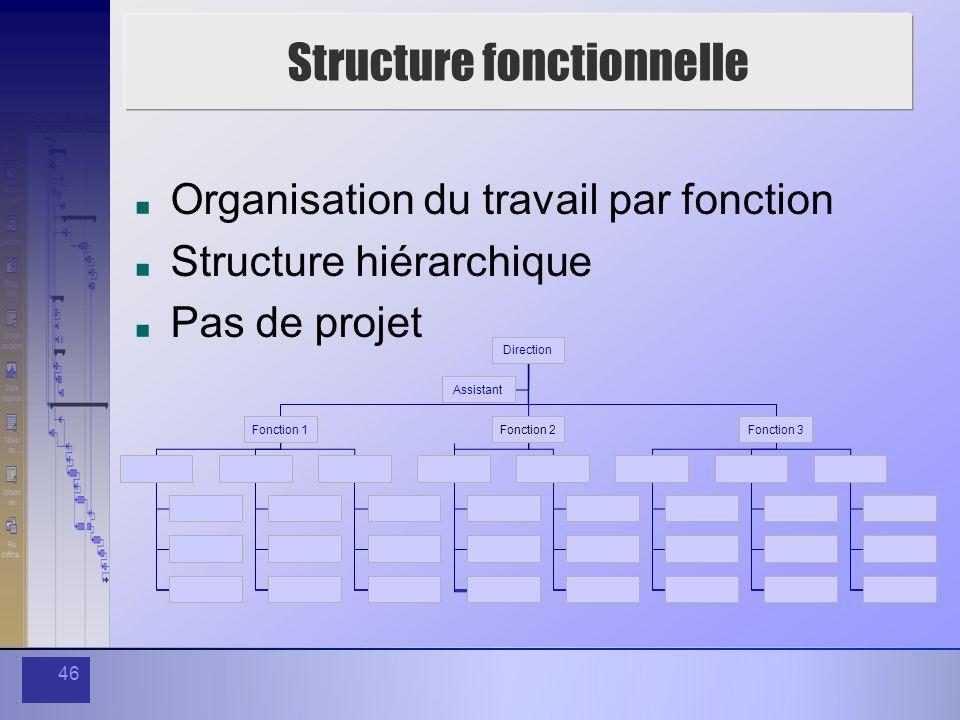 46 Structure fonctionnelle Organisation du travail par fonction Structure hiérarchique Pas de projet Direction Assistant Fonction 1Fonction 2Fonction