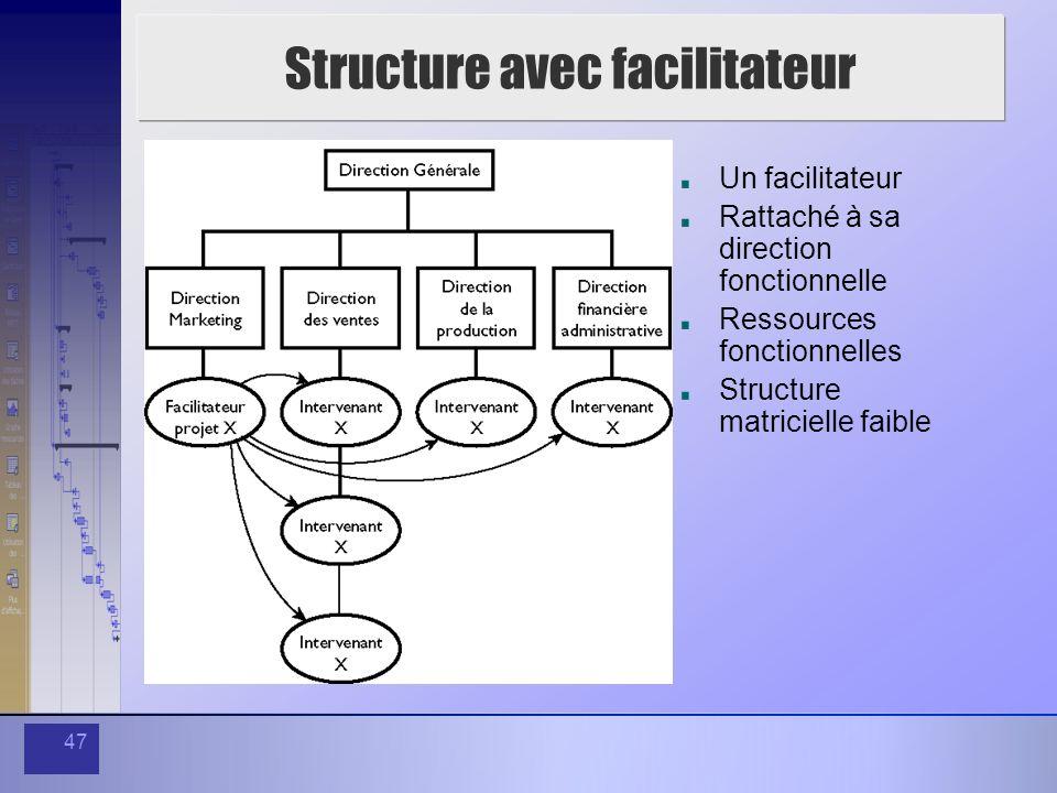 47 Structure avec facilitateur Un facilitateur Rattaché à sa direction fonctionnelle Ressources fonctionnelles Structure matricielle faible