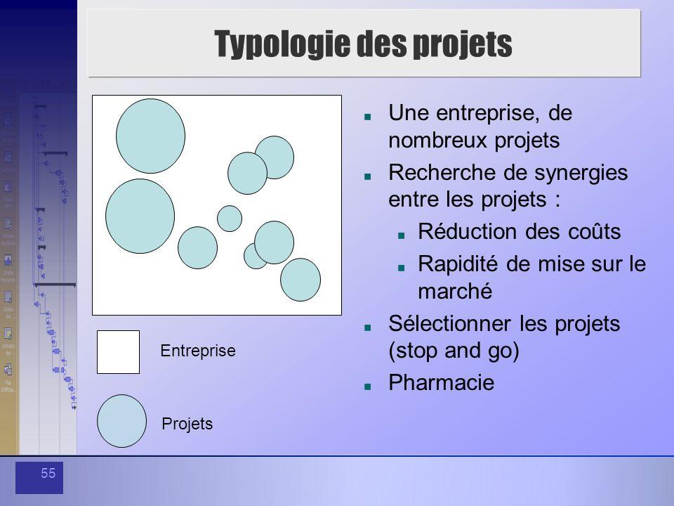 55 Typologie des projets Entreprise Projets Une entreprise, de nombreux projets Recherche de synergies entre les projets : Réduction des coûts Rapidit