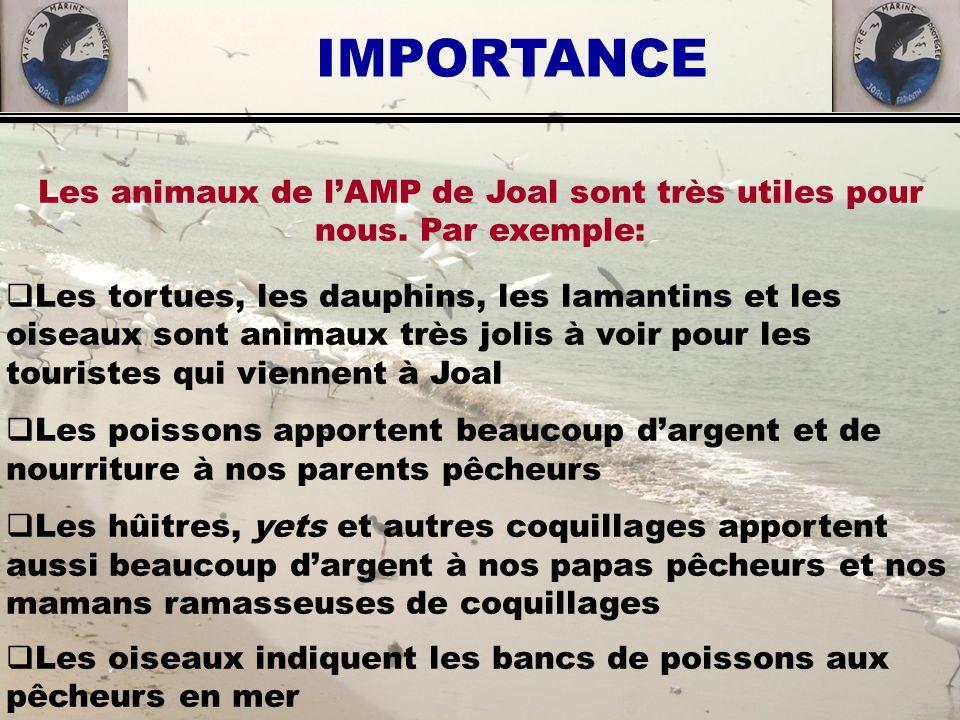 Les animaux de lAMP de Joal sont très utiles pour nous. Par exemple: Les tortues, les dauphins, les lamantins et les oiseaux sont animaux très jolis à