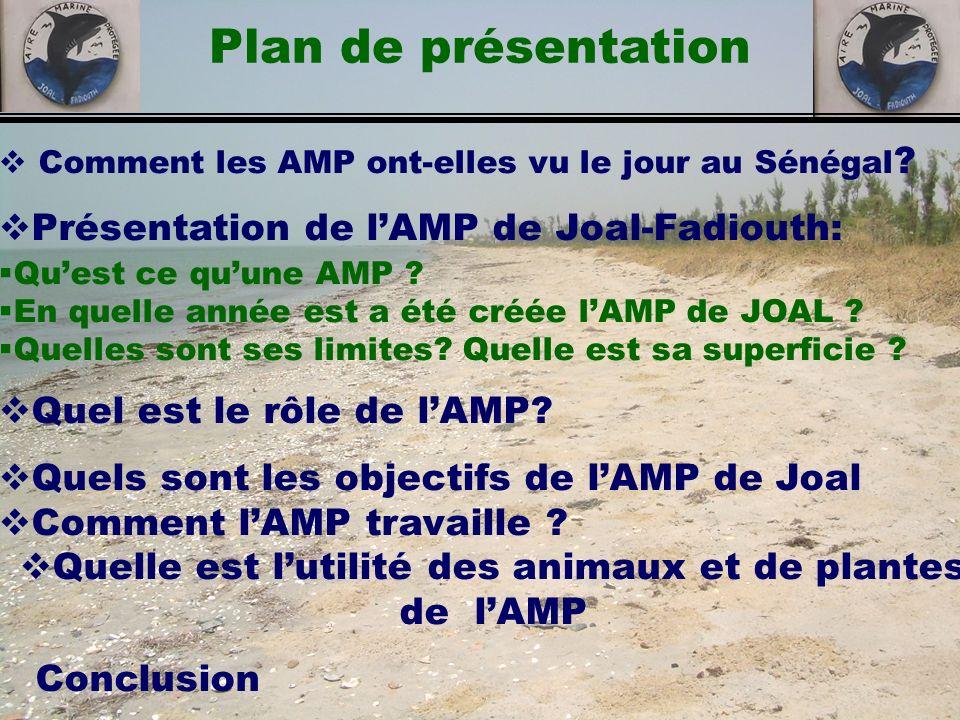 Plan de présentation Comment les AMP ont-elles vu le jour au Sénégal ? Présentation de lAMP de Joal-Fadiouth: Quest ce quune AMP ? En quelle année est