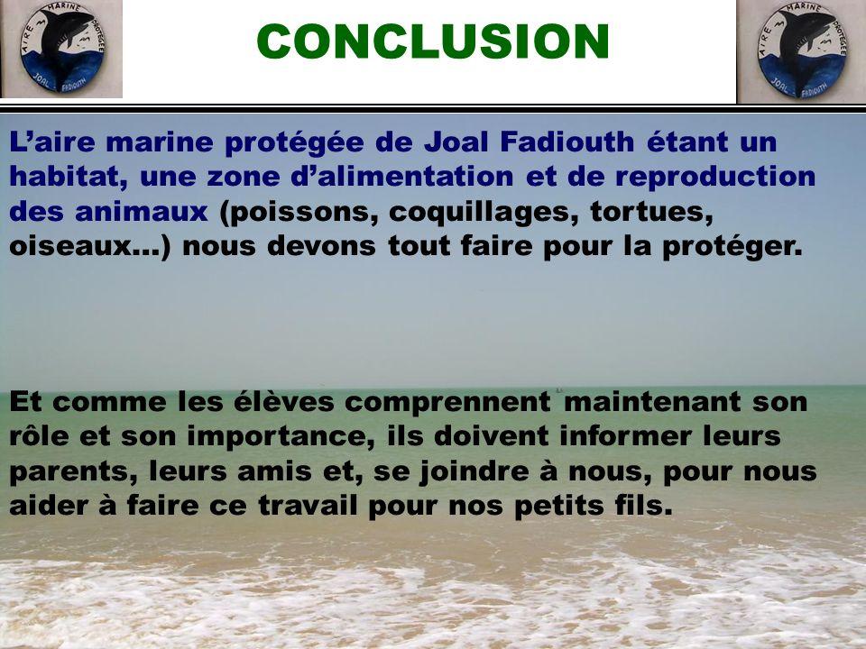 CONCLUSION Laire marine protégée de Joal Fadiouth étant un habitat, une zone dalimentation et de reproduction des animaux (poissons, coquillages, tort