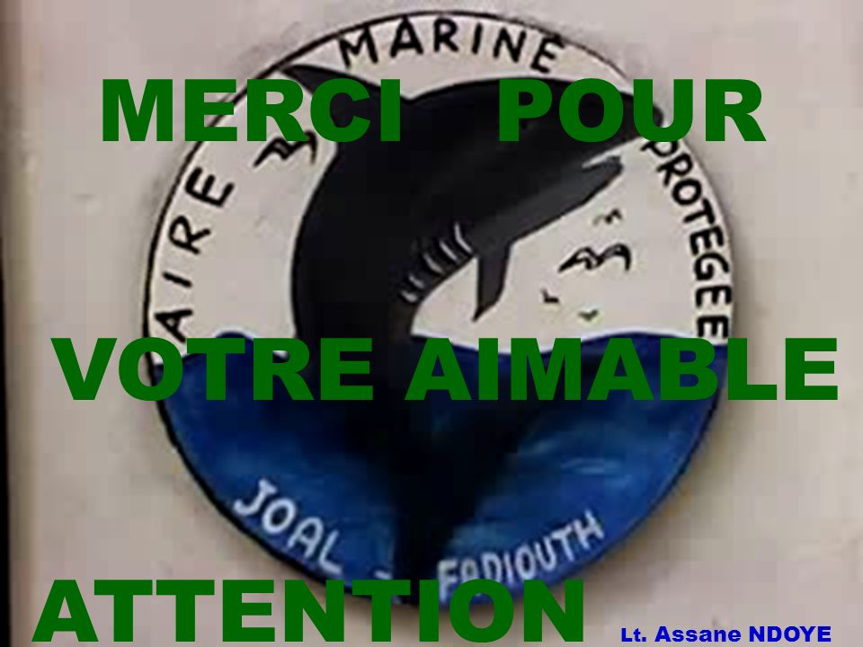 MERCI POUR VOTRE AIMABLE ATTENTION Lt. Assane NDOYE