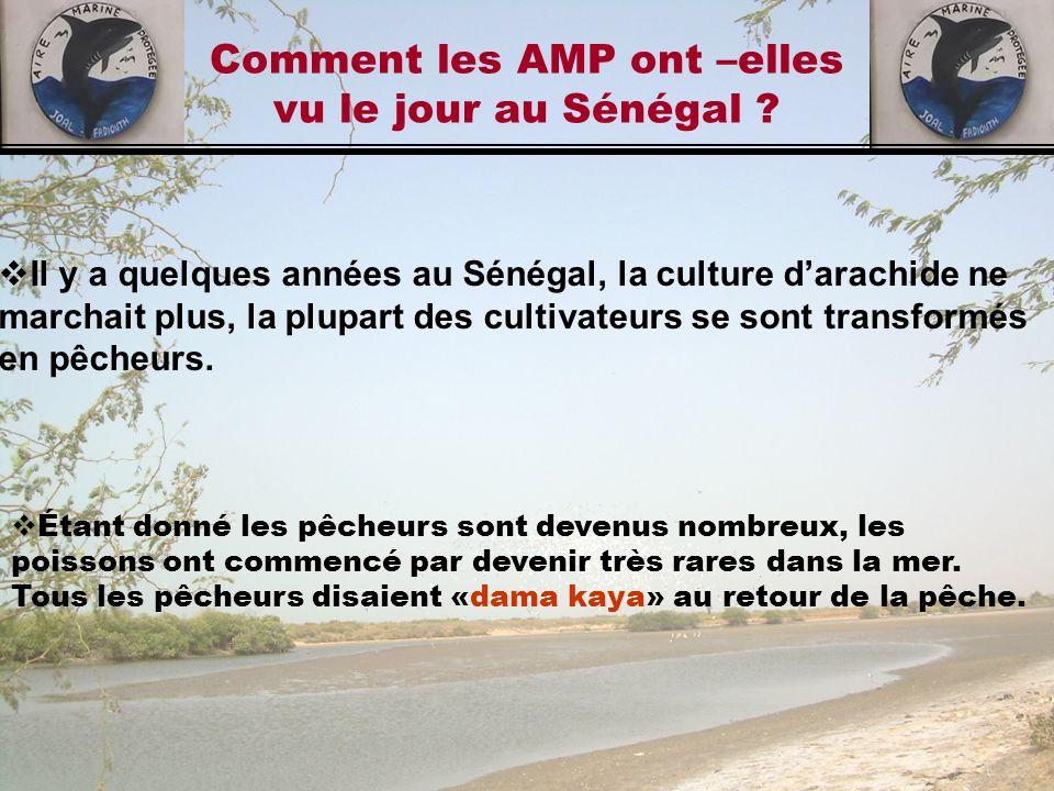 Comment les AMP ont –elles vu le jour au Sénégal ? Il y a quelques années au Sénégal, la culture darachide ne marchait plus, la plupart des cultivateu