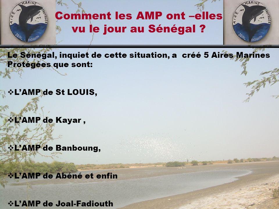 Le Sénégal, inquiet de cette situation, a créé 5 Aires Marines Protégées que sont: LAMP de St LOUIS, LAMP de Kayar, LAMP de Banboung, LAMP de Abéné et