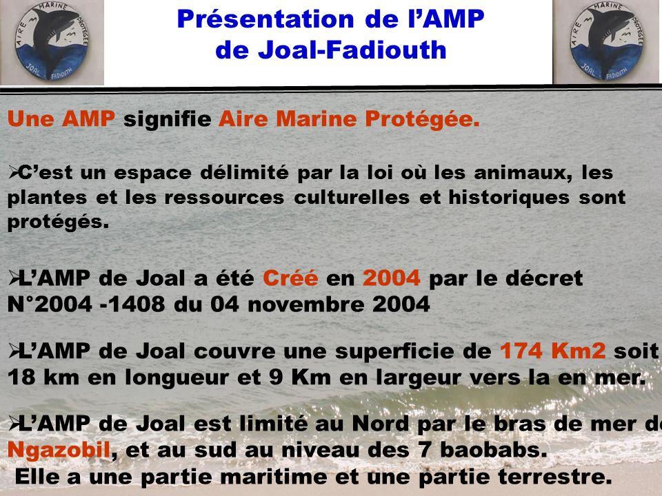 Présentation de lAMP de Joal-Fadiouth LAMP de Joal couvre une superficie de 174 Km2 soit 18 km en longueur et 9 Km en largeur vers la en mer. Une AMP