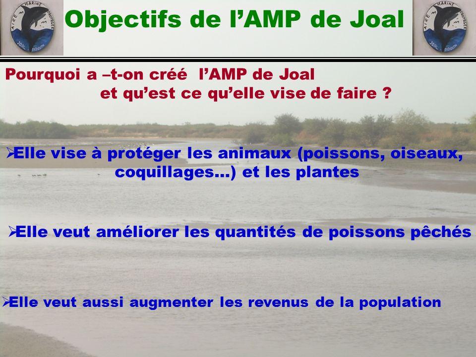 Pourquoi a –t-on créé lAMP de Joal et quest ce quelle vise de faire ? Objectifs de lAMP de Joal Elle vise à protéger les animaux (poissons, oiseaux, c