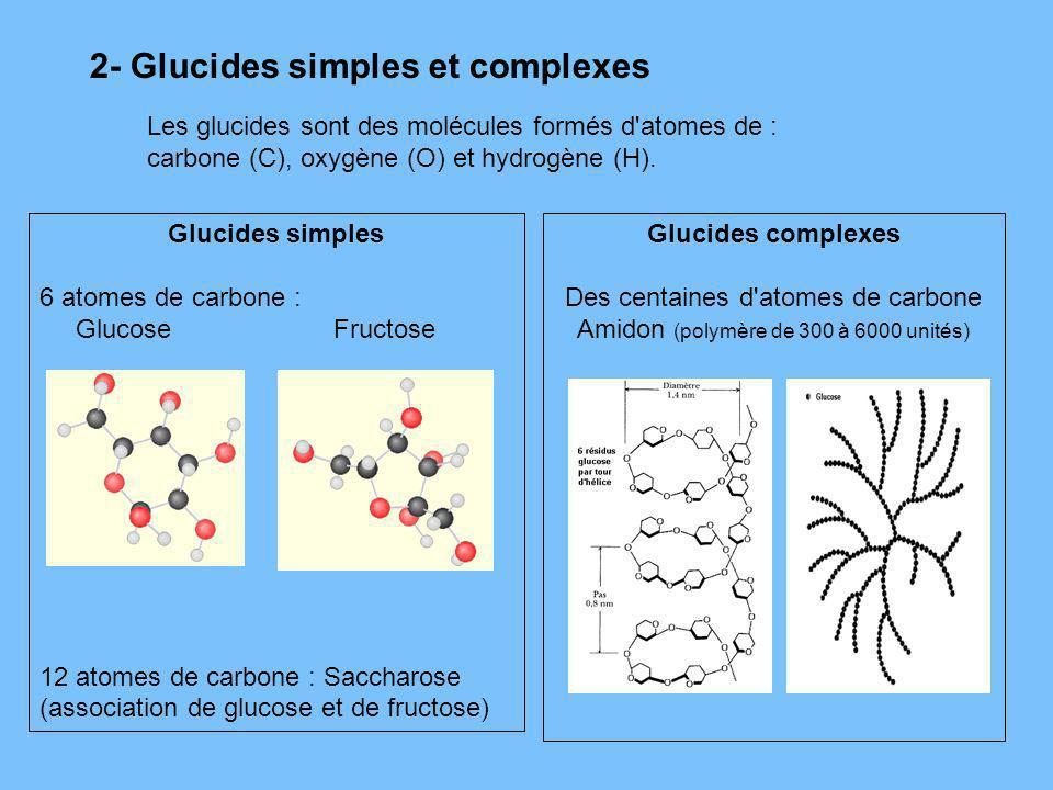 2- Glucides simples et complexes Les glucides sont des molécules formés d'atomes de : carbone (C), oxygène (O) et hydrogène (H). Glucides simples 6 at