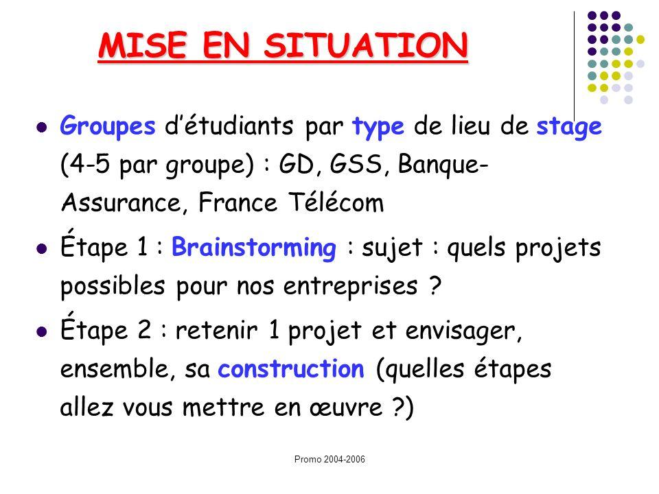Promo 2004-2006 MISE EN SITUATION Groupes détudiants par type de lieu de stage (4-5 par groupe) : GD, GSS, Banque- Assurance, France Télécom Étape 1 :