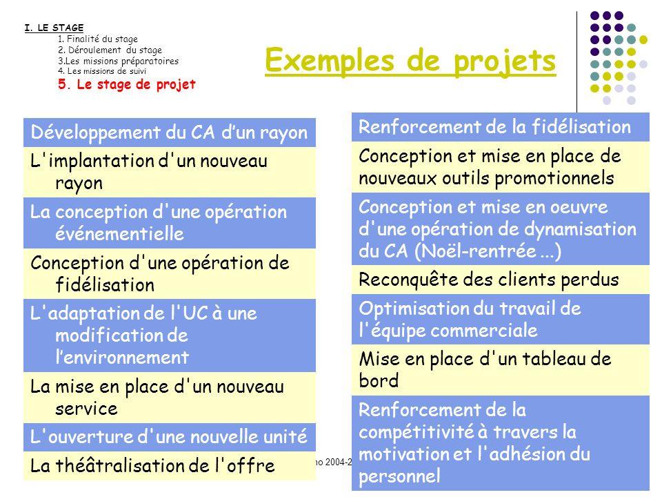 Promo 2004-2006 Exemples de projets I. LE STAGE 1. Finalité du stage 2. Déroulement du stage 3.Les missions préparatoires 4. Les missions de suivi 5.
