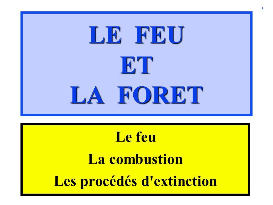 1 LE FEU ET LA FORET Le feu La combustion Les procédés d'extinction