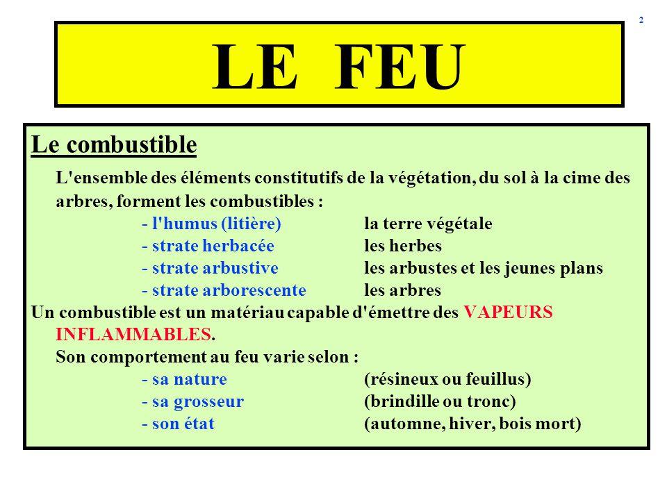2 Le combustible L'ensemble des éléments constitutifs de la végétation, du sol à la cime des arbres, forment les combustibles : - l'humus (litière)la