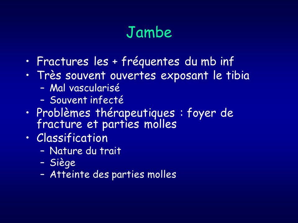 Jambe Fractures les + fréquentes du mb inf Très souvent ouvertes exposant le tibia –Mal vascularisé –Souvent infecté Problèmes thérapeutiques : foyer