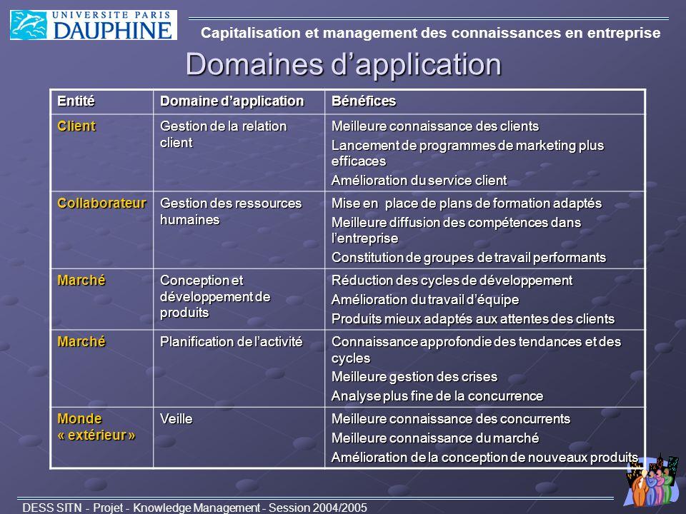 Domaines dapplication Capitalisation et management des connaissances en entreprise DESS SITN - Projet - Knowledge Management - Session 2004/2005Entité