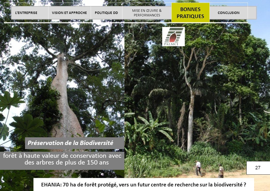 La démarche RSE de SIFCA - Juin 2013 © SIFCA SA All rights reserved. EHANIA: 70 ha de forêt protégé, vers un futur centre de recherche sur la biodiver