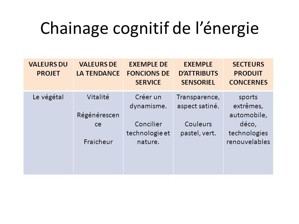 Chainage cognitif de lénergie VALEURS DU PROJET VALEURS DE LA TENDANCE EXEMPLE DE FONCIONS DE SERVICE EXEMPLE DATTRIBUTS SENSORIEL SECTEURS PRODUIT CO