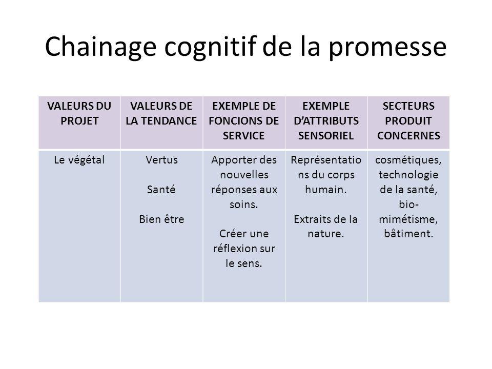 Chainage cognitif de la promesse VALEURS DU PROJET VALEURS DE LA TENDANCE EXEMPLE DE FONCIONS DE SERVICE EXEMPLE DATTRIBUTS SENSORIEL SECTEURS PRODUIT