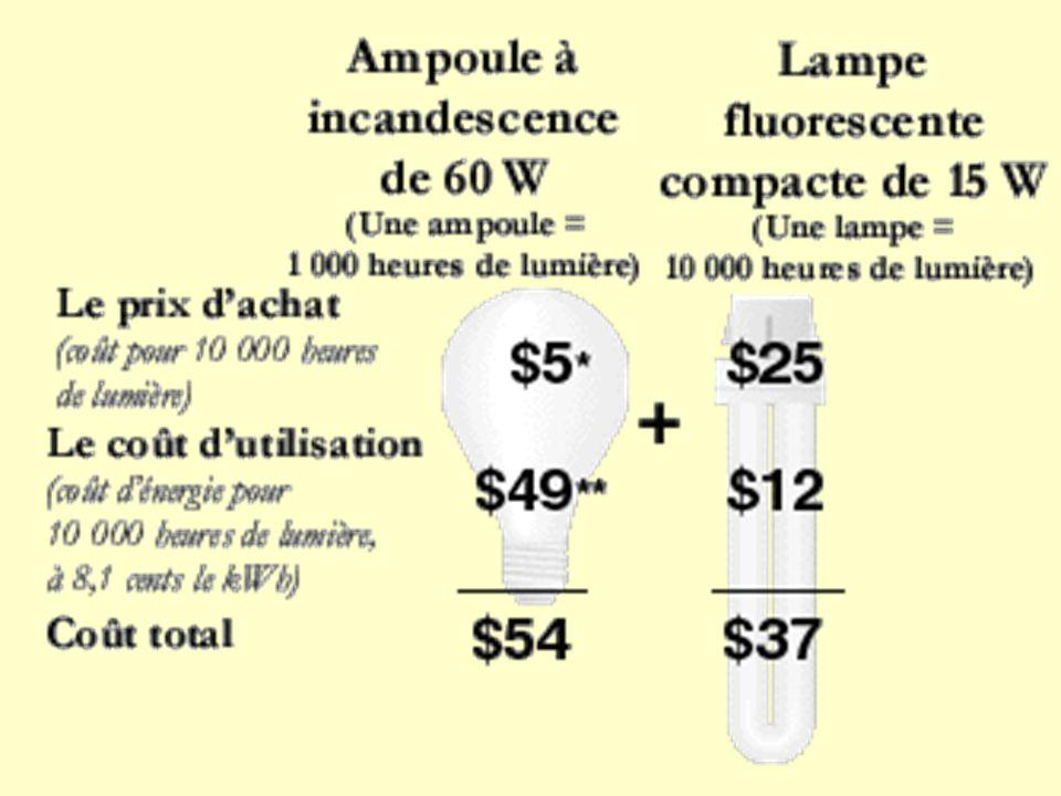 Extrait Bac Technologique Hôtelier session remplacement 1995 Le gérant d une cuisine de collectivité décide de remplacer les lampes à incandescence par les lampes fluocompactes présentées annexe 2.