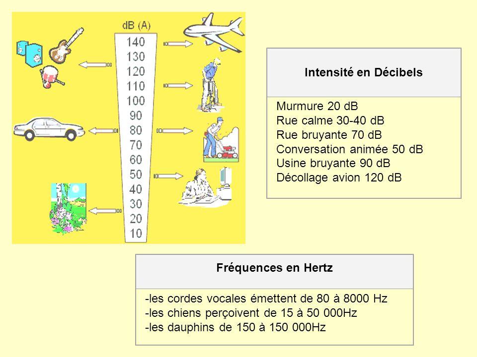 Fréquences en Hertz -les cordes vocales émettent de 80 à 8000 Hz -les chiens perçoivent de 15 à 50 000Hz -les dauphins de 150 à 150 000Hz Intensité en