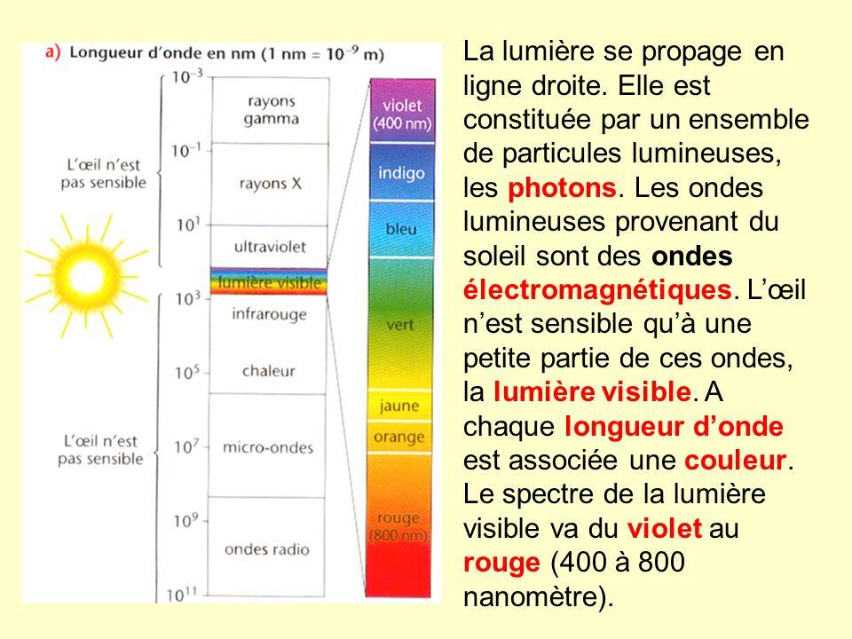La lumière se propage en ligne droite. Elle est constituée par un ensemble de particules lumineuses, les photons. Les ondes lumineuses provenant du so