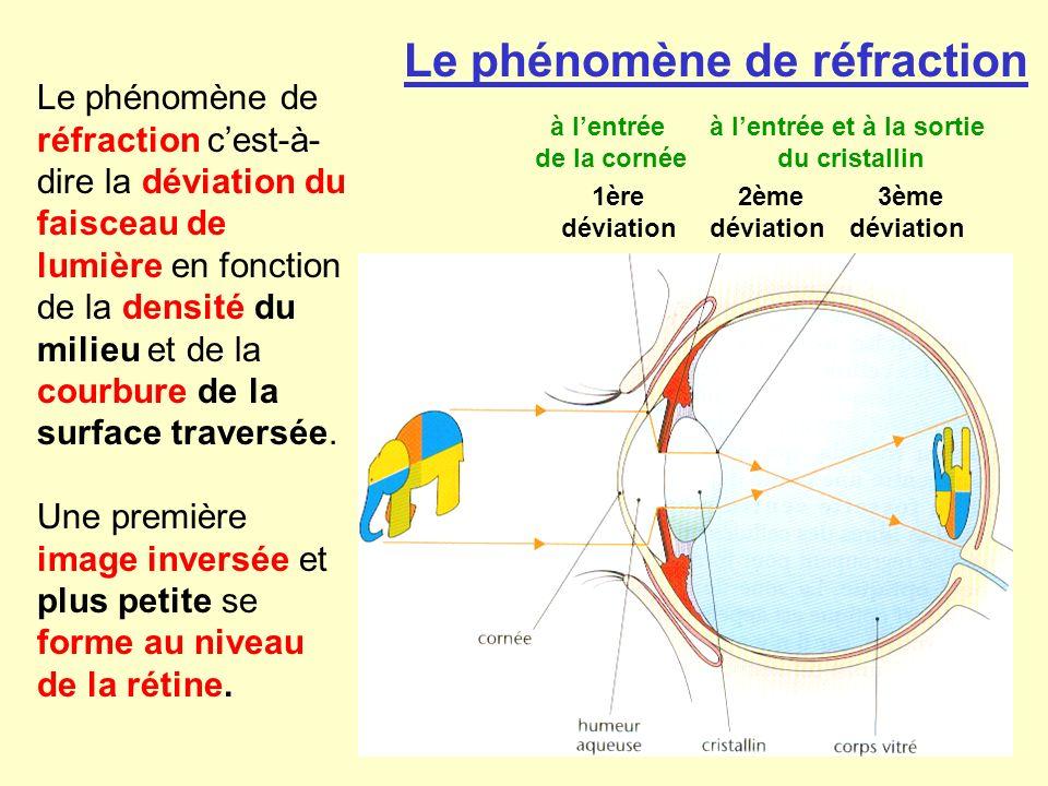 Le phénomène de réfraction cest-à- dire la déviation du faisceau de lumière en fonction de la densité du milieu et de la courbure de la surface traver