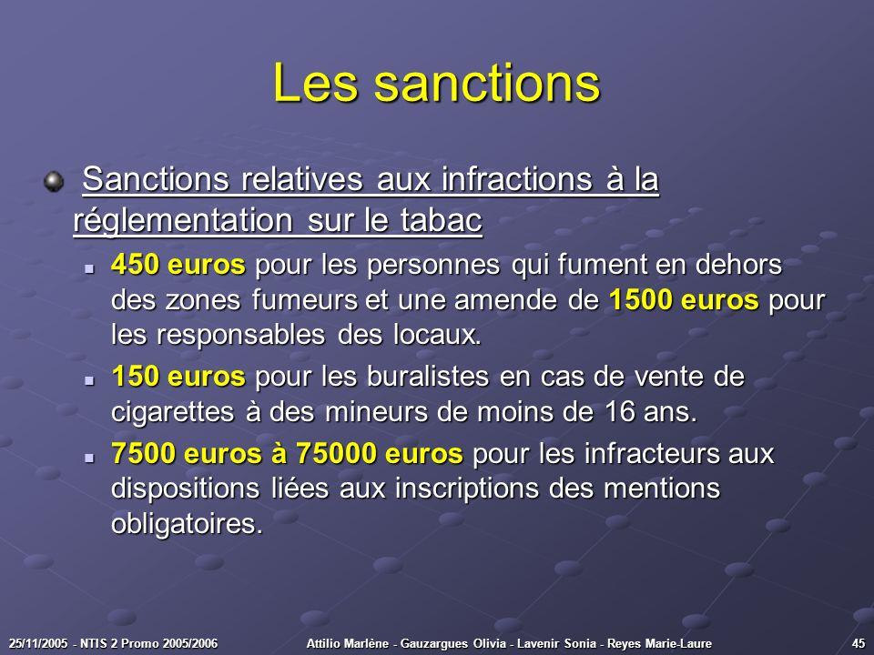 4525/11/2005 - NTIS 2 Promo 2005/2006Attilio Marlène - Gauzargues Olivia - Lavenir Sonia - Reyes Marie-Laure Les sanctions Sanctions relatives aux inf
