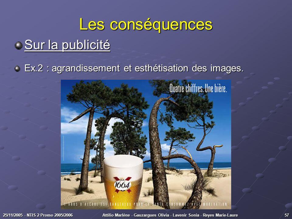 5725/11/2005 - NTIS 2 Promo 2005/2006Attilio Marlène - Gauzargues Olivia - Lavenir Sonia - Reyes Marie-Laure Les conséquences Sur la publicité Ex.2 :