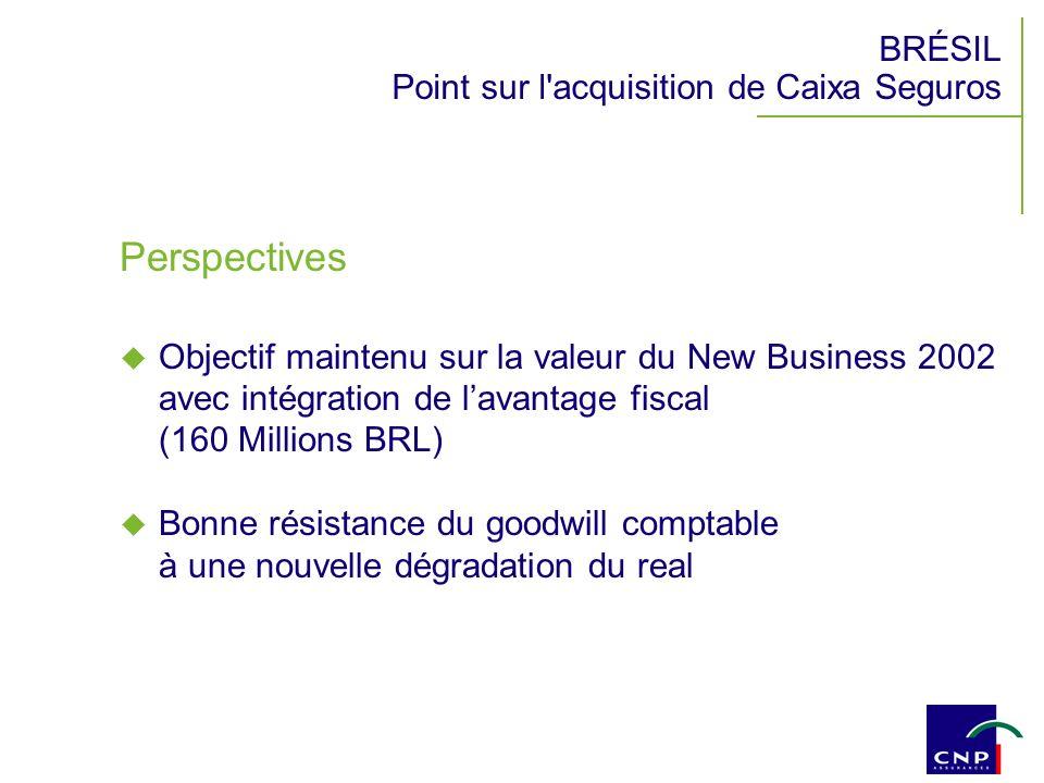 BRÉSIL Point sur l acquisition de Caixa Seguros Perspectives Objectif maintenu sur la valeur du New Business 2002 avec intégration de lavantage fiscal (160 Millions BRL) Bonne résistance du goodwill comptable à une nouvelle dégradation du real