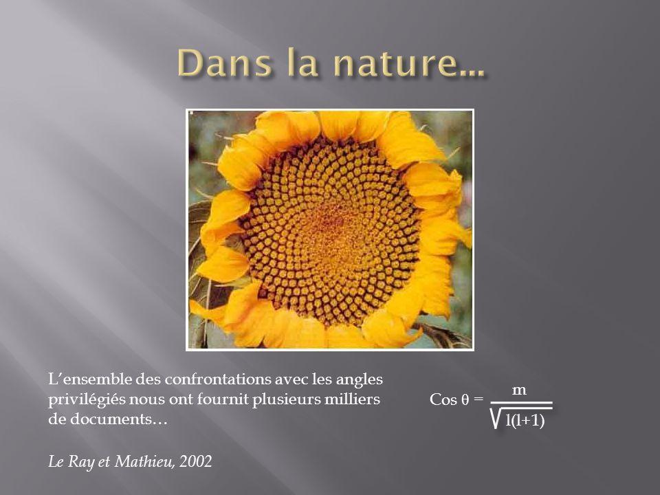 Lensemble des confrontations avec les angles privilégiés nous ont fournit plusieurs milliers de documents… Cos θ = m l(l+1) Le Ray et Mathieu, 2002