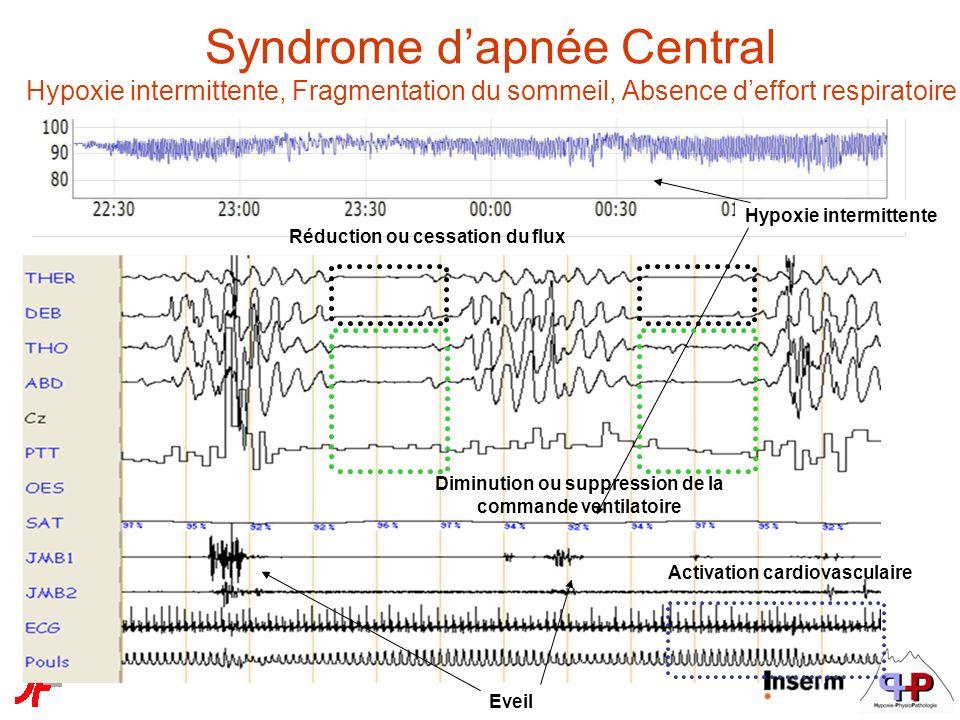 Réduction ou cessation du flux Diminution ou suppression de la commande ventilatoire Eveil Activation cardiovasculaire Syndrome dapnée Central Hypoxie