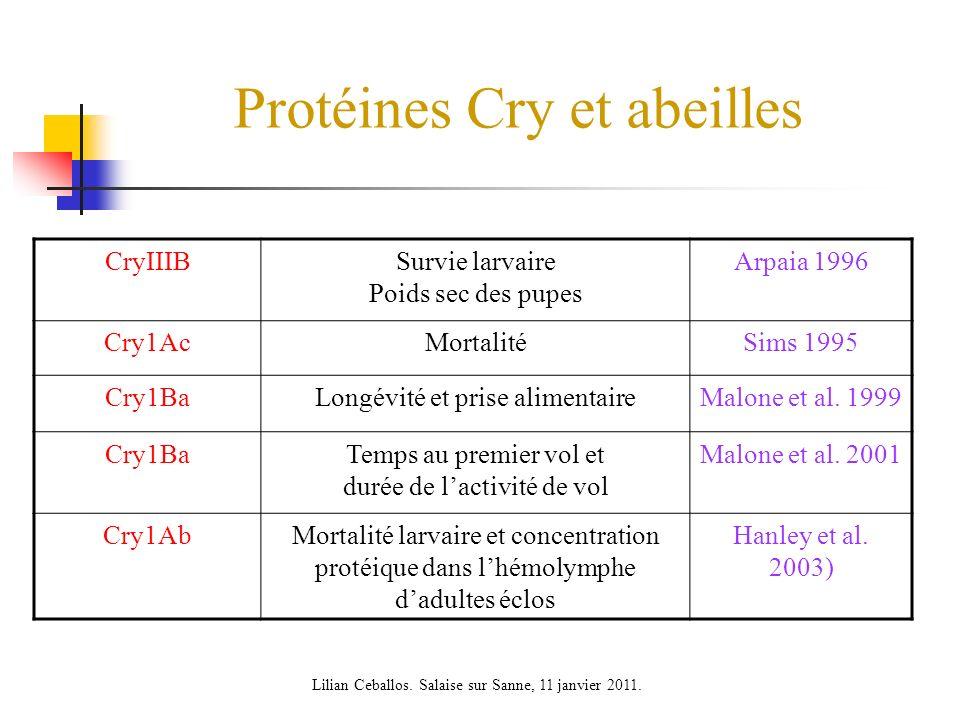 Protéines Cry et abeilles CryIIIBSurvie larvaire Poids sec des pupes Arpaia 1996 Cry1AcMortalitéSims 1995 Cry1BaLongévité et prise alimentaireMalone et al.