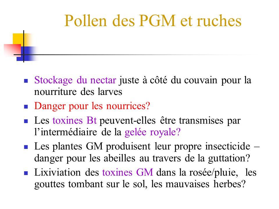 Pollen des PGM et ruches Stockage du nectar juste à côté du couvain pour la nourriture des larves Danger pour les nourrices.
