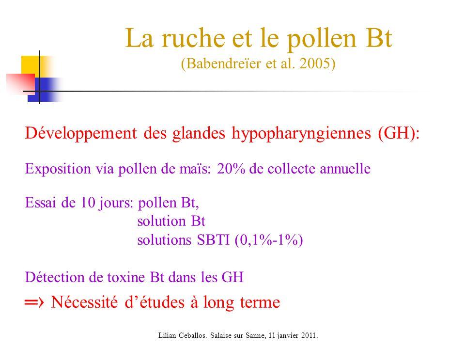 La ruche et le pollen Bt (Babendreïer et al.
