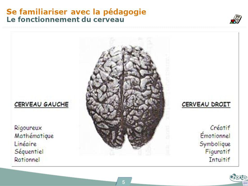 5 Se familiariser avec la pédagogie Le fonctionnement du cerveau