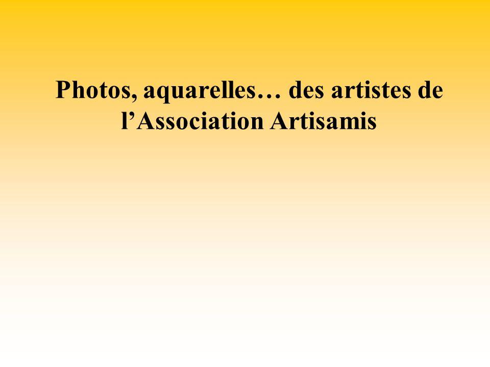 Photos, aquarelles… des artistes de lAssociation Artisamis