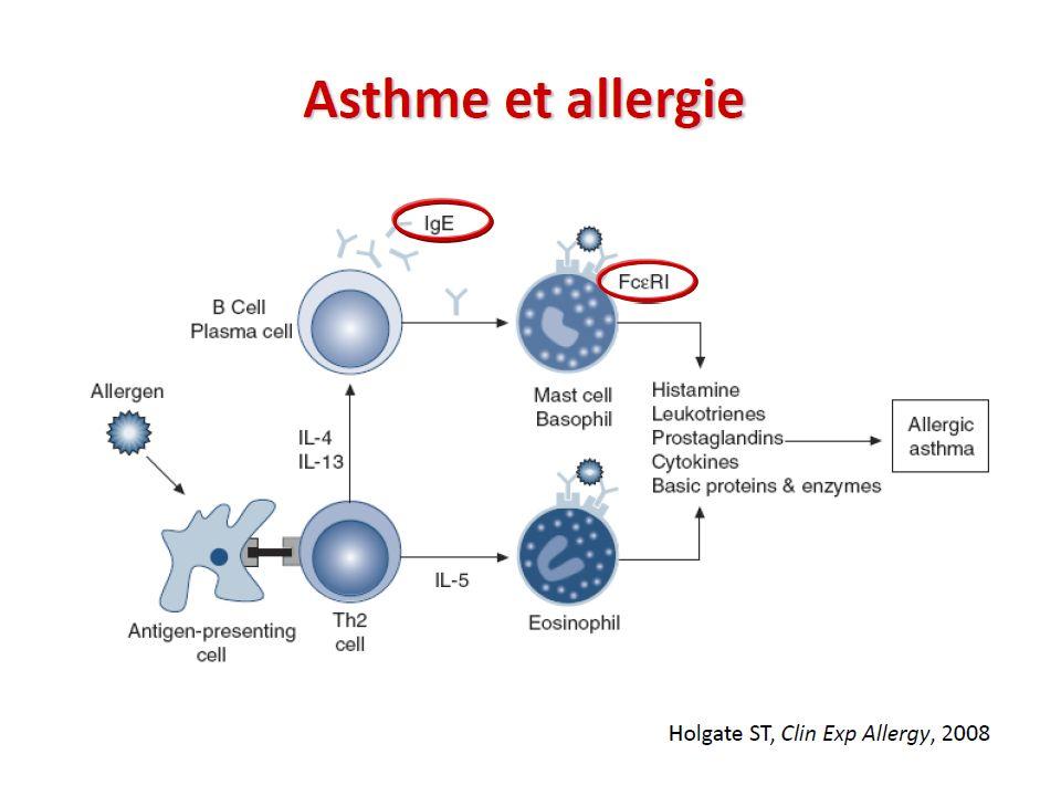 Allergie et inflammation