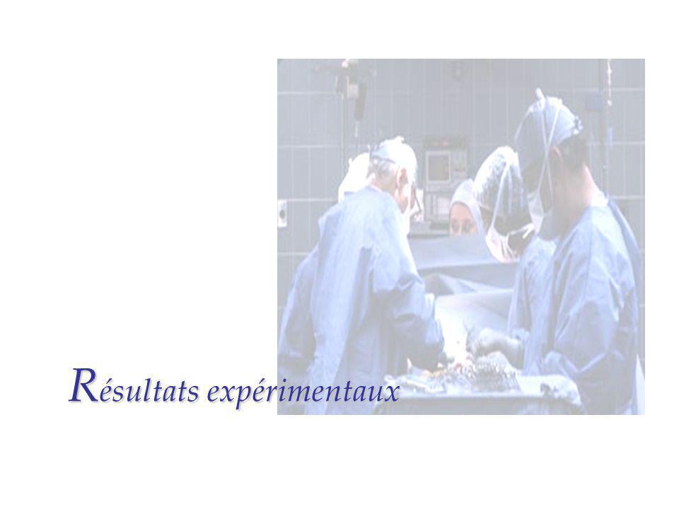 R ésultats expérimentaux