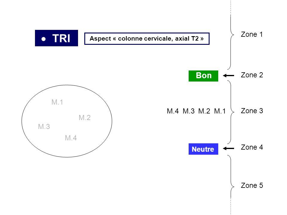 TRI M.1 M.2 M.3 M.4 M.3M.4M.1 Neutre Bon Zone 2 Zone 3 Zone 4 Zone 5 Zone 1 M.2 Aspect « colonne cervicale, axial T2 »
