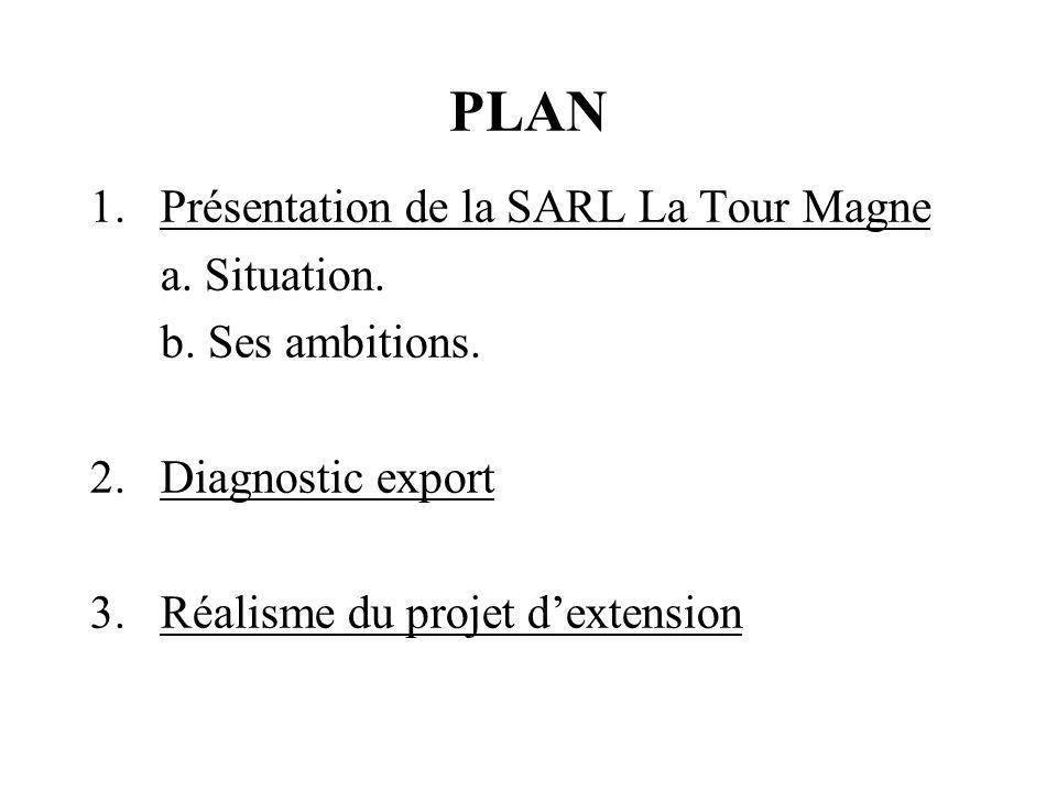 PLAN 1.Présentation de la SARL La Tour Magne a. Situation. b. Ses ambitions. 2.Diagnostic export 3.Réalisme du projet dextension