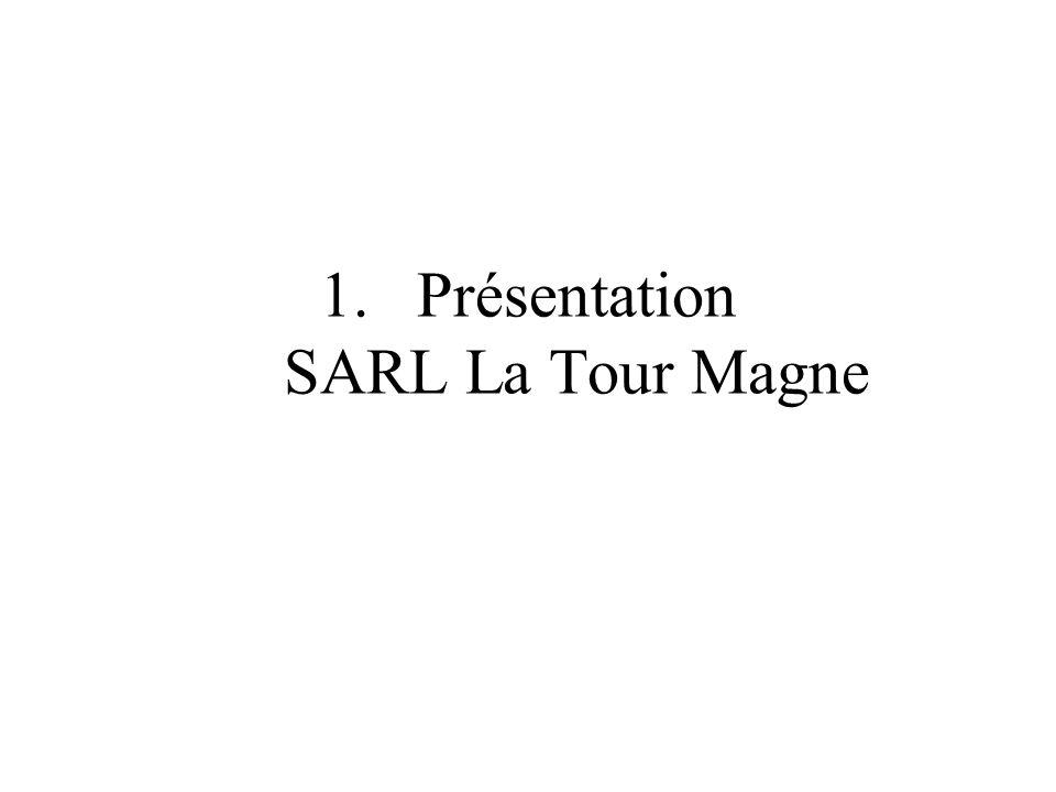 1.Présentation SARL La Tour Magne