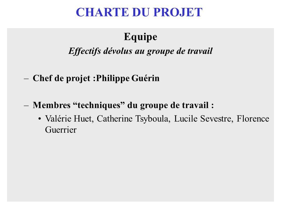 CHARTE DU PROJET Equipe Effectifs dévolus au groupe de travail –Chef de projet :Philippe Guérin –Membres techniques du groupe de travail : Valérie Hue