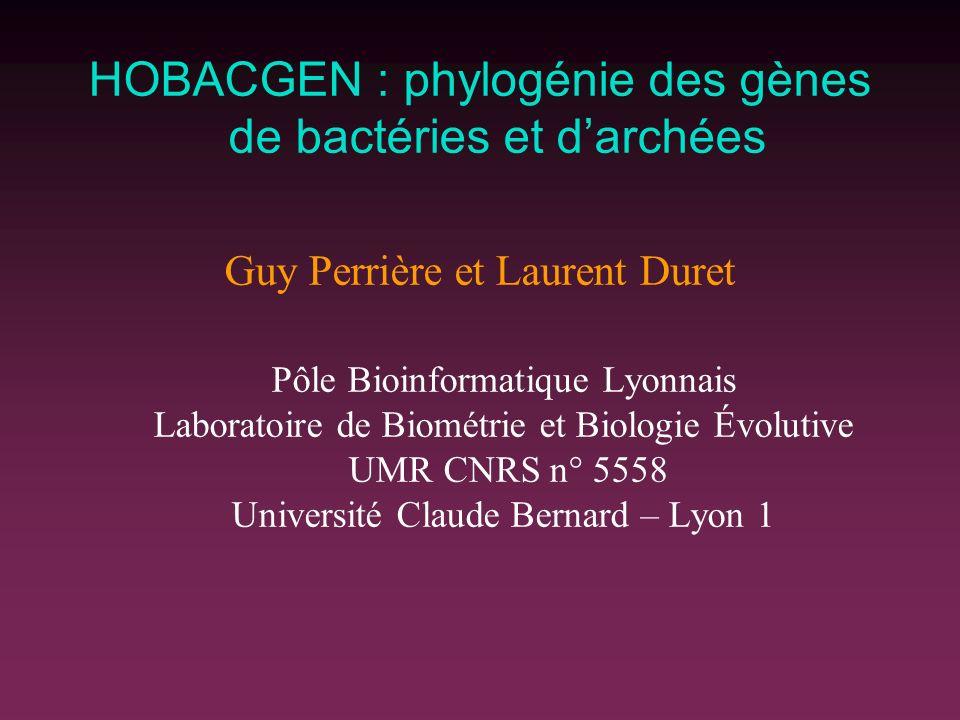 HOBACGEN : phylogénie des gènes de bactéries et darchées Guy Perrière et Laurent Duret Pôle Bioinformatique Lyonnais Laboratoire de Biométrie et Biolo