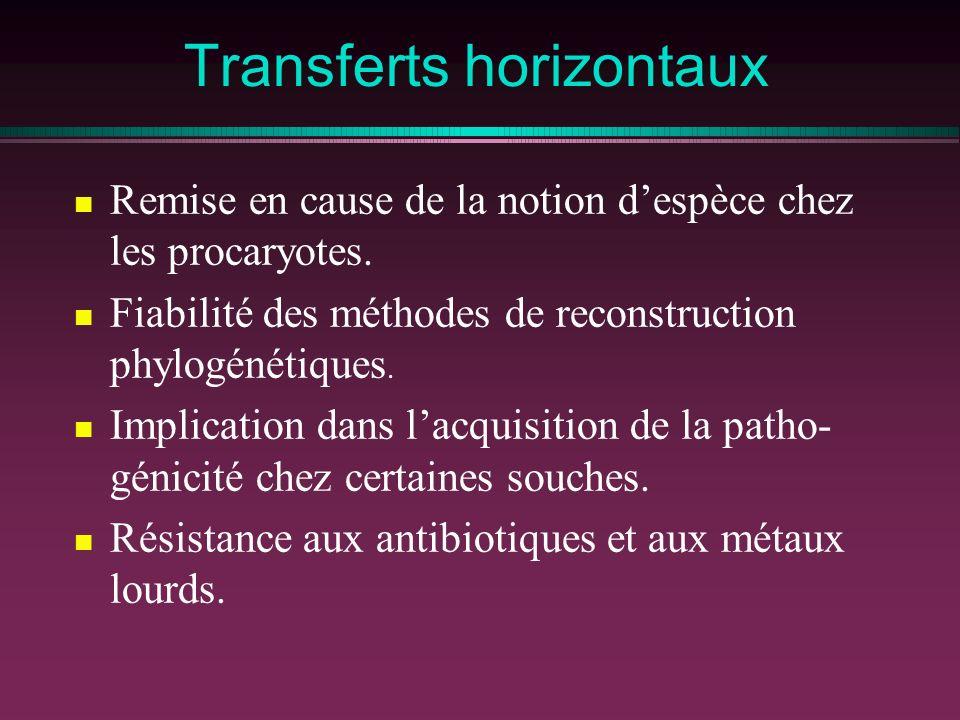 Transferts horizontaux Remise en cause de la notion despèce chez les procaryotes. Fiabilité des méthodes de reconstruction phylogénétiques. Implicatio