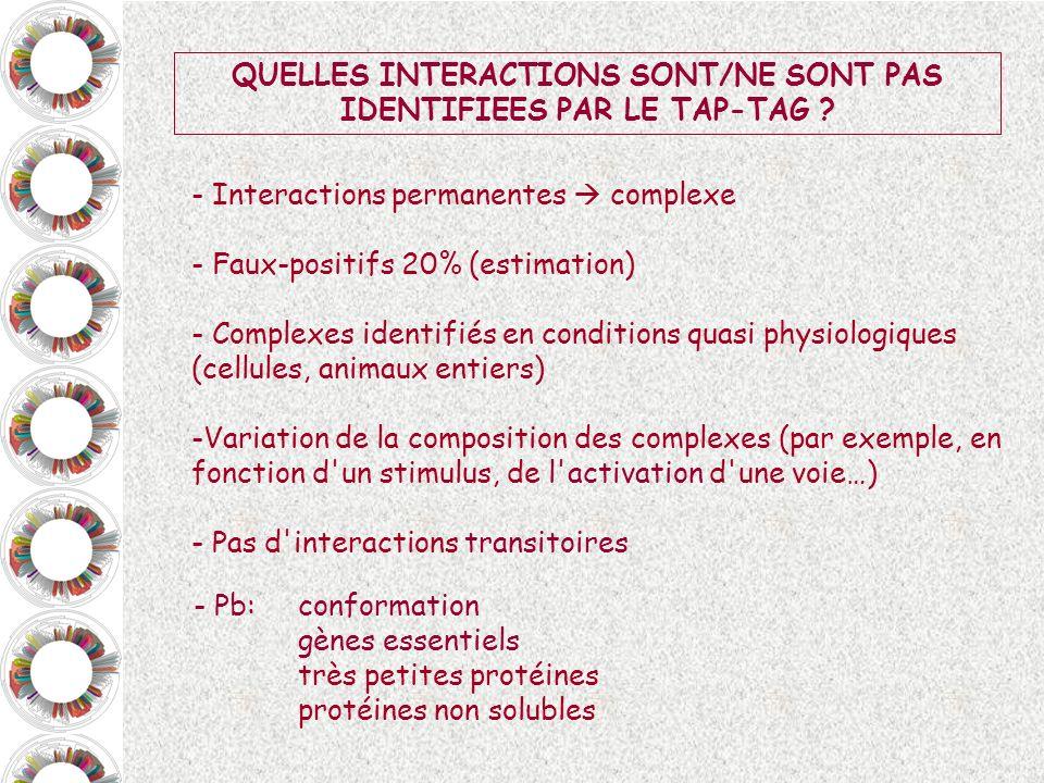 QUELLES INTERACTIONS SONT/NE SONT PAS IDENTIFIEES PAR LE TAP-TAG ? - Interactions permanentes complexe - Faux-positifs 20% (estimation) - Complexes id