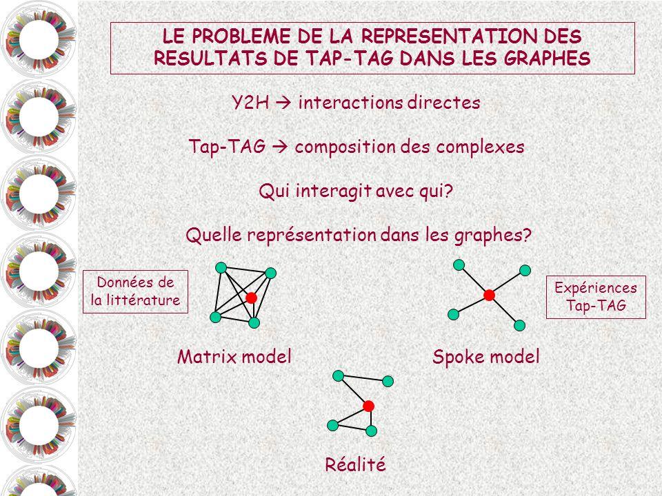 LE PROBLEME DE LA REPRESENTATION DES RESULTATS DE TAP-TAG DANS LES GRAPHES Y2H interactions directes Tap-TAG composition des complexes Qui interagit a
